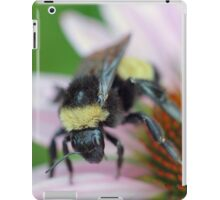 Summer is winding down... iPad Case/Skin