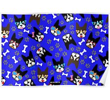 Boston Terrier Funny Faces Blue Poster