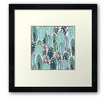 beautiful cactus Framed Print