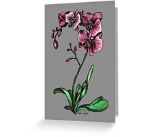 Orchids Watercolor Painting Greeting Card