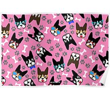 Boston Terrier Funny Faces Pink Poster