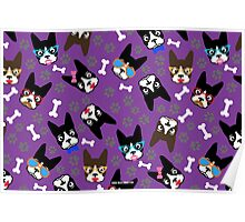 Boston Terrier Funny Faces Purple Poster