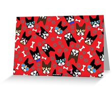 Boston Terrier Funny Faces Red Greeting Card