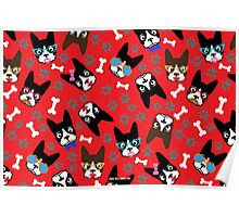 Boston Terrier Funny Faces Red Poster