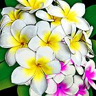 Plumeria Flowers Bouquet by BluedarkArt