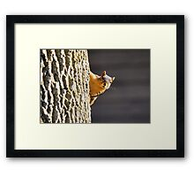 Peek...oh...it's that crazy lady with the dog.  Framed Print
