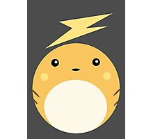 Raichu Ball Photographic Print