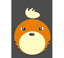 Growlithe Ball Photographic Print