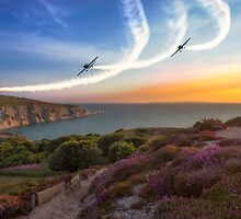 Blades Over The Needles by manateevoyager