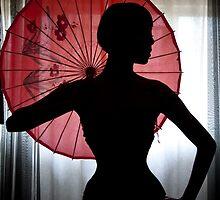 Elegant silhouette by jokerfotografia