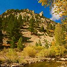 Fall Comes to the High Sierras by Barbara  Brown