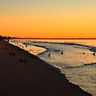 Pigeons & Seagulls sunrise rendez-vous!!!!! by Poete100