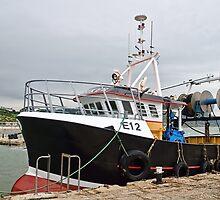 New Seeker ~ Lyme Regis Harbour by Susie Peek