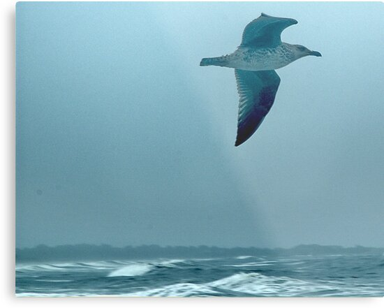 Above the Waves by Barry Doherty