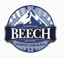 Beech Mountain North Carolina by Carolina Swagger