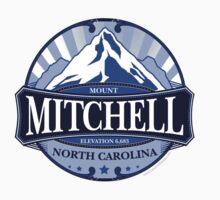 Mount Mitchell North Carolina by Carolina Swagger