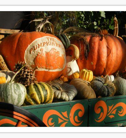 Pumpkin Harvest.... Sticker