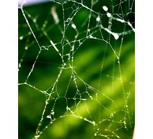 Abstract Spider Web Photographic Print