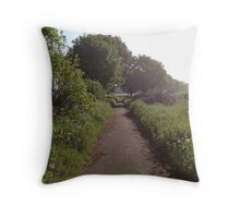 Sunshine On Footpath In The Countryside Throw Pillow