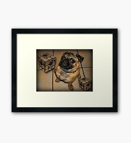 *•.¸♥♥¸.•*DON'T U BE CALLING ME SQUARE - PUG PICTURE - CARD*•.¸♥♥¸.•* Framed Print