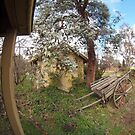 Hill Station Canberra 8mm #4 by Tom McDonnell