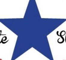 Vote for Strat  Sticker