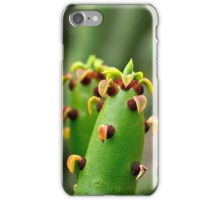 Euphorbia from Madagascar iPhone Case/Skin