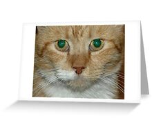 Green Eyes Greeting Card