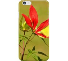 Hibiscus and Sulfur iPhone Case/Skin