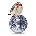 lightening bolt bird (bowie) by kikicollagist