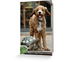 Kamea on deck Greeting Card