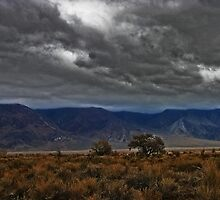 """""""High Country Lonesome"""" by CanyonWind"""