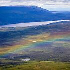 Rainbow Over Denali by Robert Kelch, M.D.