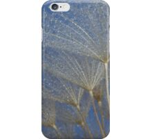 Spectacle iPhone Case/Skin