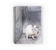 White Cat in Back alleys Spiral Notebook