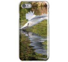 Swan taking off from river iPhone Case/Skin