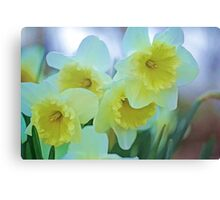 HAPPY EASTER ! Canvas Print