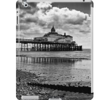 Pier and the beach iPad Case/Skin