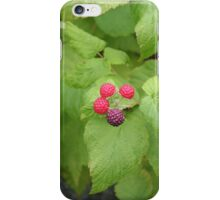 Berry Simple iPhone Case/Skin