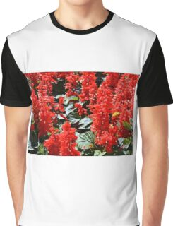 Red flowers pattern Graphic T-Shirt