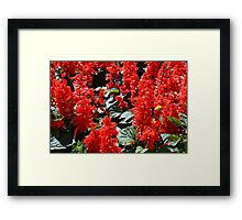 Red flowers pattern Framed Print