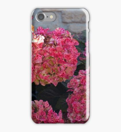 Pink flowers natural background iPhone Case/Skin
