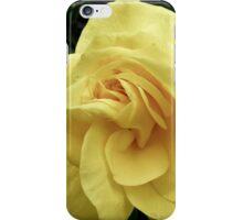Yellow Rose iPhone Case/Skin