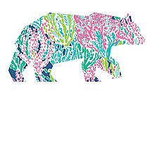 Lilly Pulitzer Geometric Bear Photographic Print