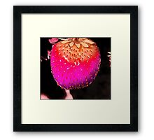 Strawberry Pink (O.9) Framed Print