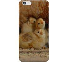 Three Chicks iPhone Case/Skin
