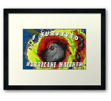 Hurricane Matthew Framed Print
