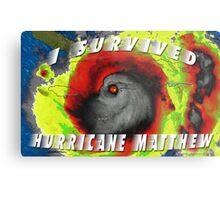 Hurricane Matthew Metal Print