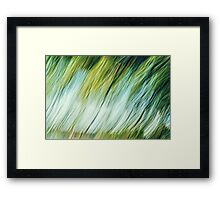 Under The Old Willow Framed Print