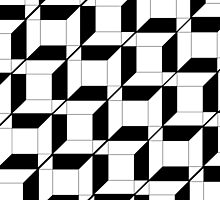 Black & White Cubes  by FriedClitoris